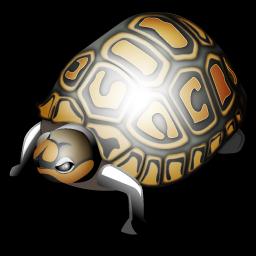 tortoise_icon