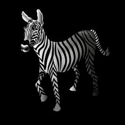 zebra_icon