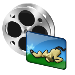 video_image_icon