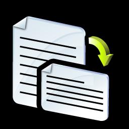 orientation_icon