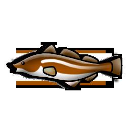 cod_fish_icon