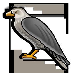 hawk_icon
