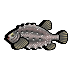 lumpfish_icon