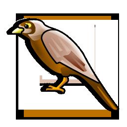 miner_bird_icon