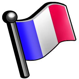flag_france_icon