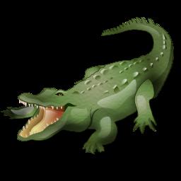 alligator_icon
