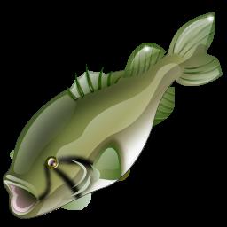bass_fish_icon