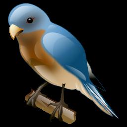 bluebird_icon