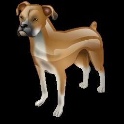 boxer_dog_icon