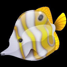 butterflyfish_icon