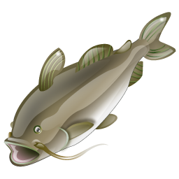 catfish_icon