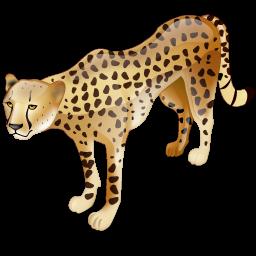 cheetah_icon