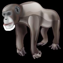 chimpance_icon