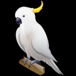 cockatoo_icon