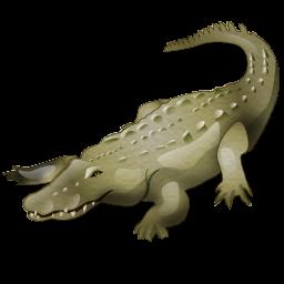 crocodile_icon
