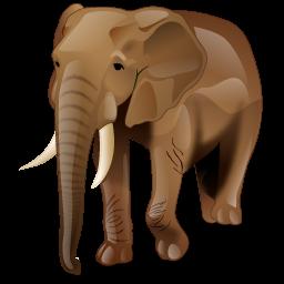 elephant_icon