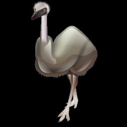emu_bird_icon