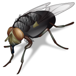 fly_icon