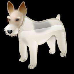 fox_terrier_dog_icon