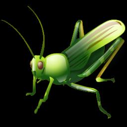 grasshopper_icon