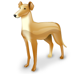 greyhound_icon