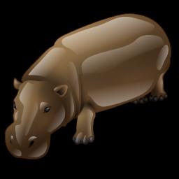 hippo_icon