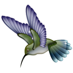 hummingbird_icon