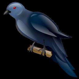 koel_bird_icon