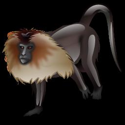 lion_monkey_icon