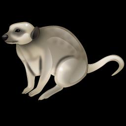 meerkat_icon