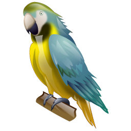 parrot_icon