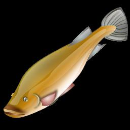 perches_fish_icon