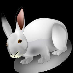 rabbit_icon