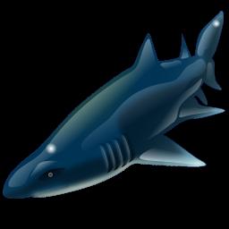 shark_icon