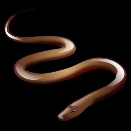 snake_icon
