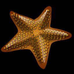 starfish_icon