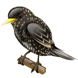 starling_icon