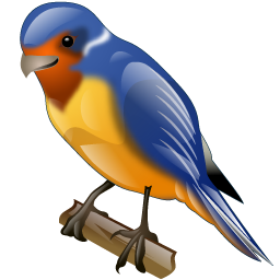 swallow_icon