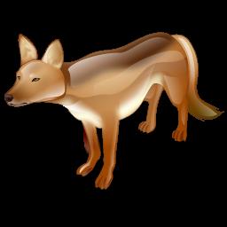 wild_dog_icon