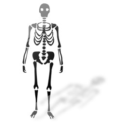 skeleton_icon