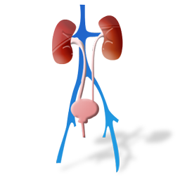 urology_icon
