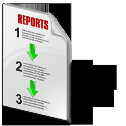 status_report_icon