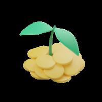 pitahaya 3d icon small